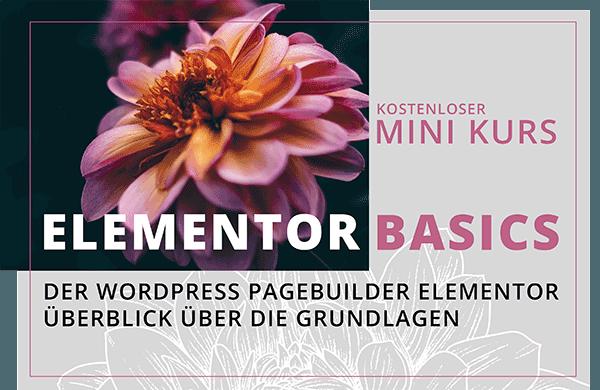 Mini Kurs Elementor Basics