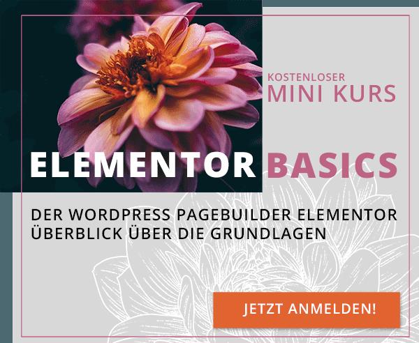 Elementor Basics Kurs